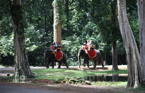 Elephant Ride from South Gate to Bayon Temple in Siem Reap Cambodia