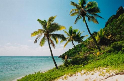 Fiji Islands Oceania - Travel Guide