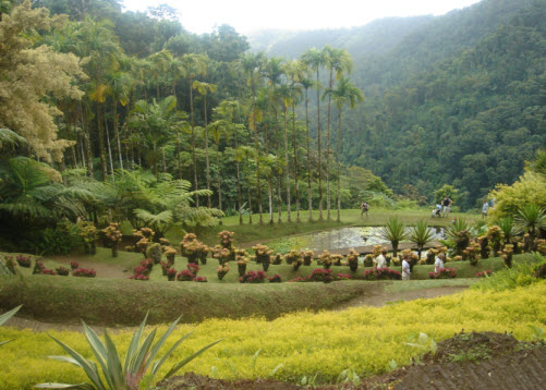 Balata Gardens in Martinique