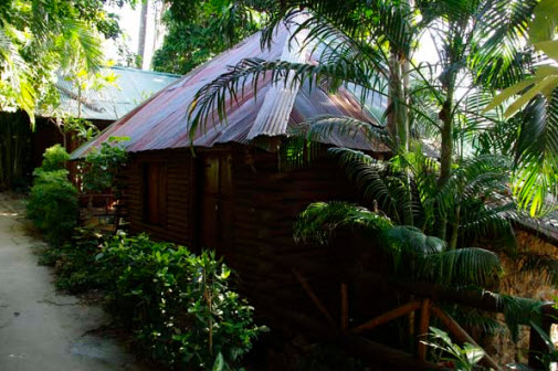 Tropical Garden Bungalow Bungalow at Tropical Garden
