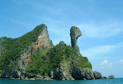 ผลการค้นหารูปภาพสำหรับ chicken island