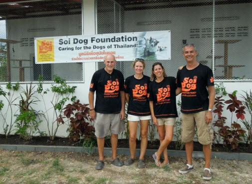 Volunteer with Soi Dog and Cats Foundation in Phuket ...
